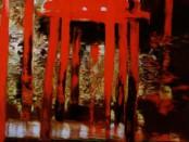 Лариса Блохина. Отражение