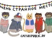 коты и странное место
