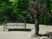 фили дерево желаний